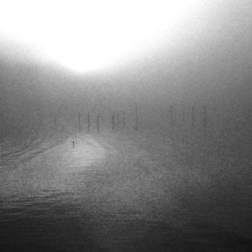 FoggyWater