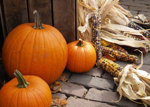 Pumpkins_JamesRGray