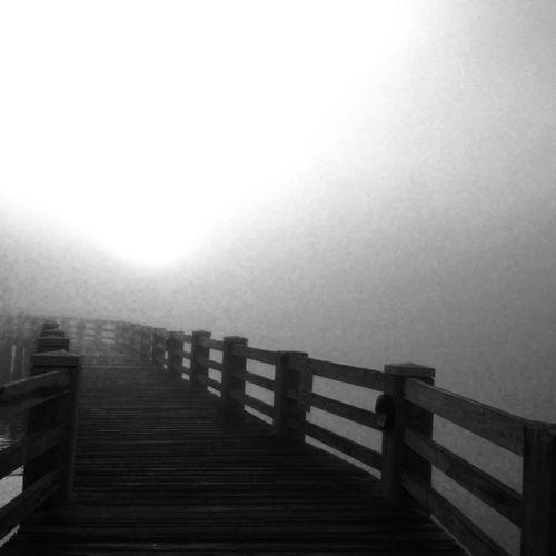FoggyBoardwalk