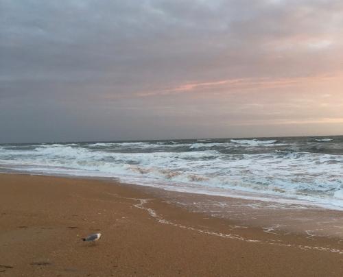 Oceansunrise