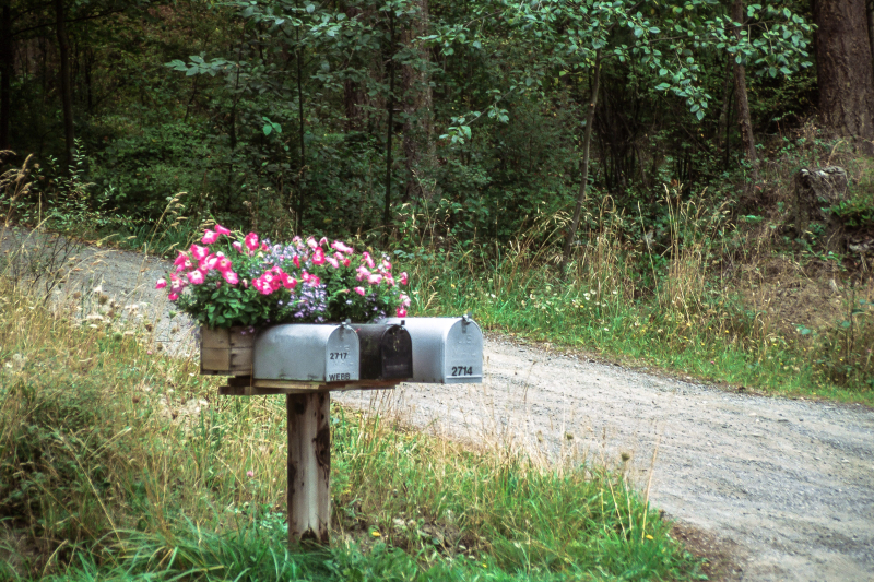 Mailbox with flowers freerangestock archives
